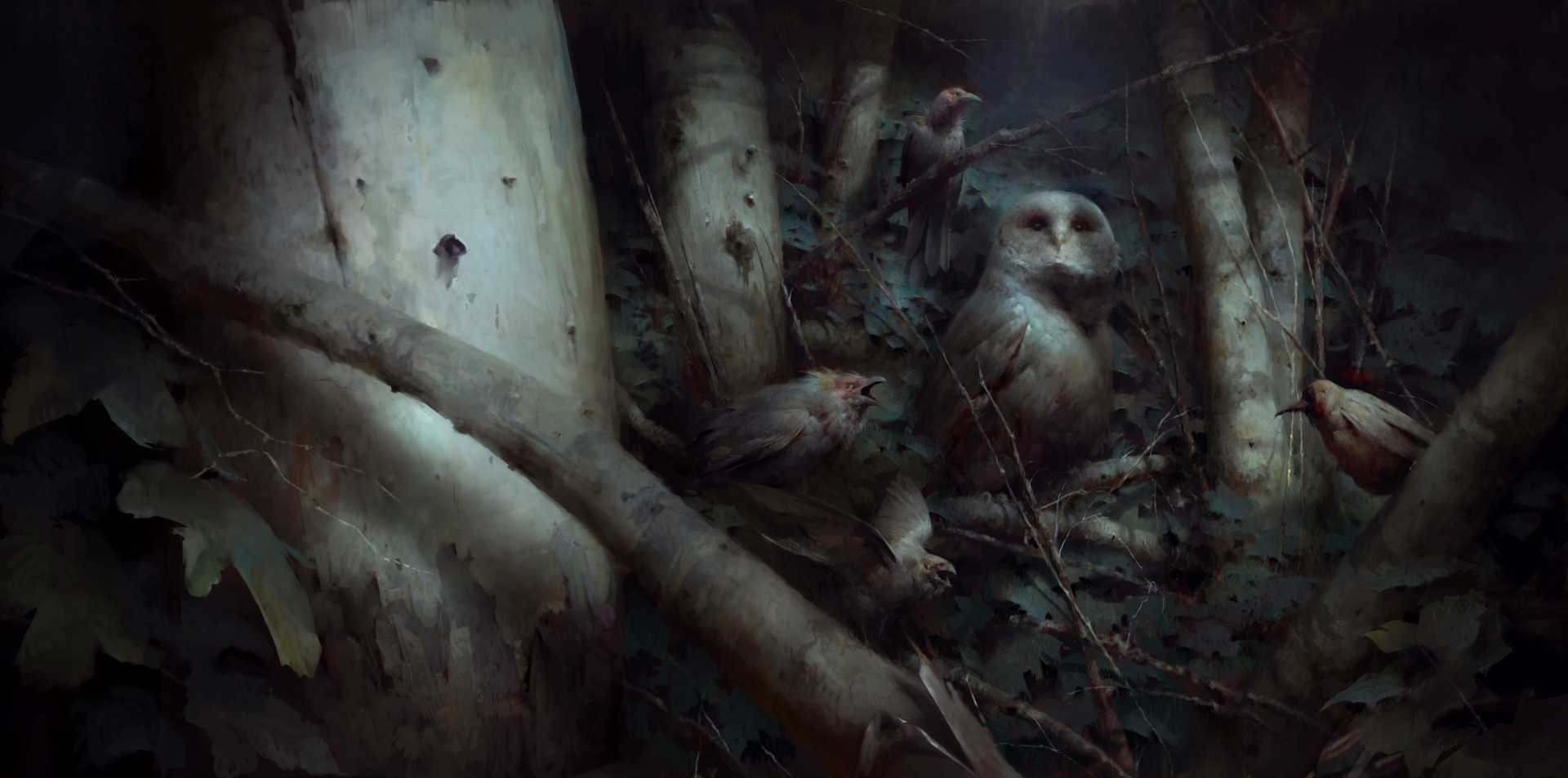 Piotr jablonski serkonan night birds with owl 2s