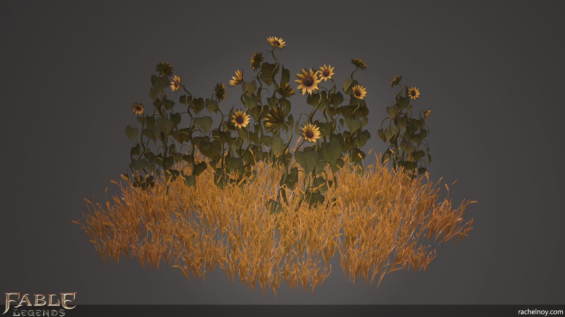 Rachel noy sunflowers2
