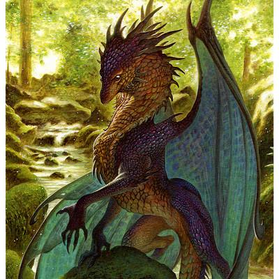 Loic canavaggia mere des dragons 01