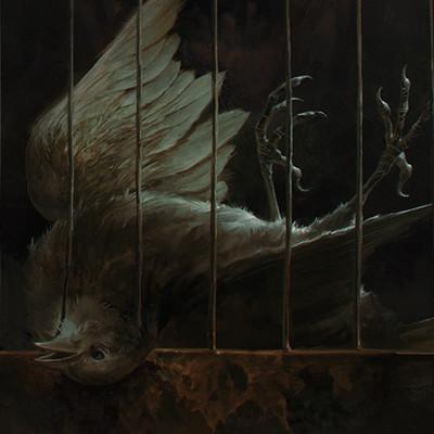 Marta dettlx bird