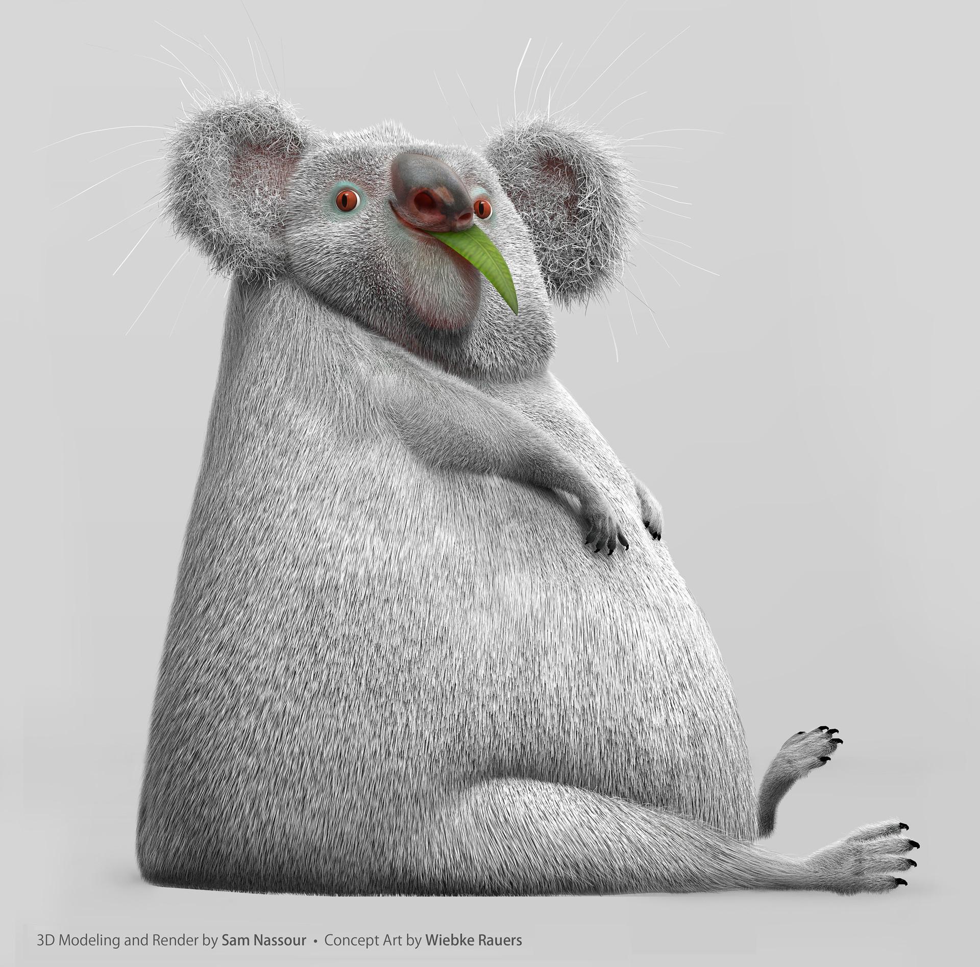 Sam nassour koala proj