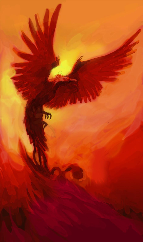 Yannick corboz d 07 phoenix