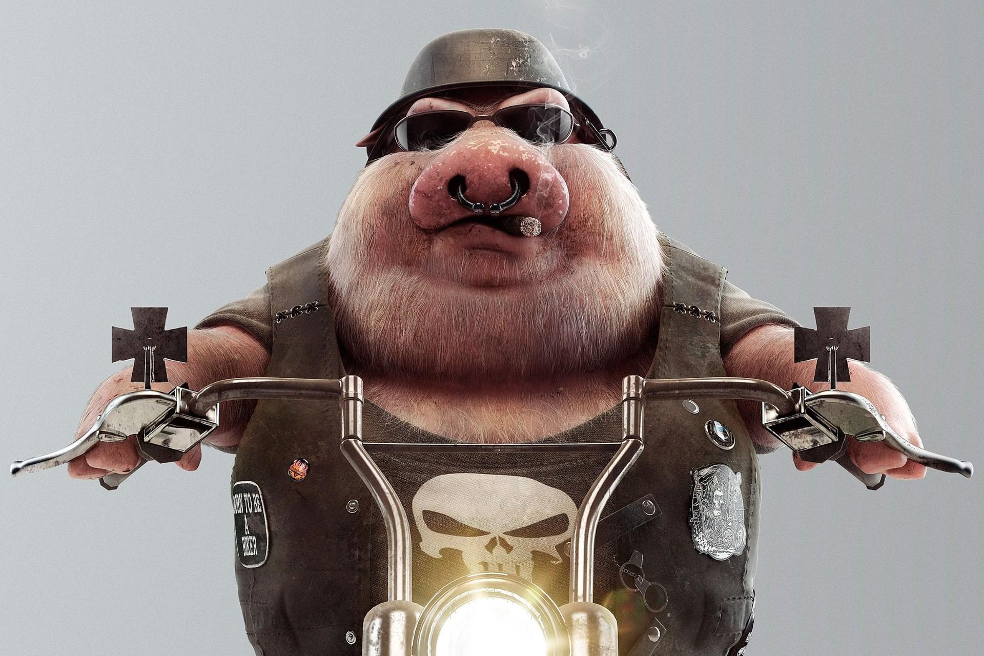Motorcycle Pig