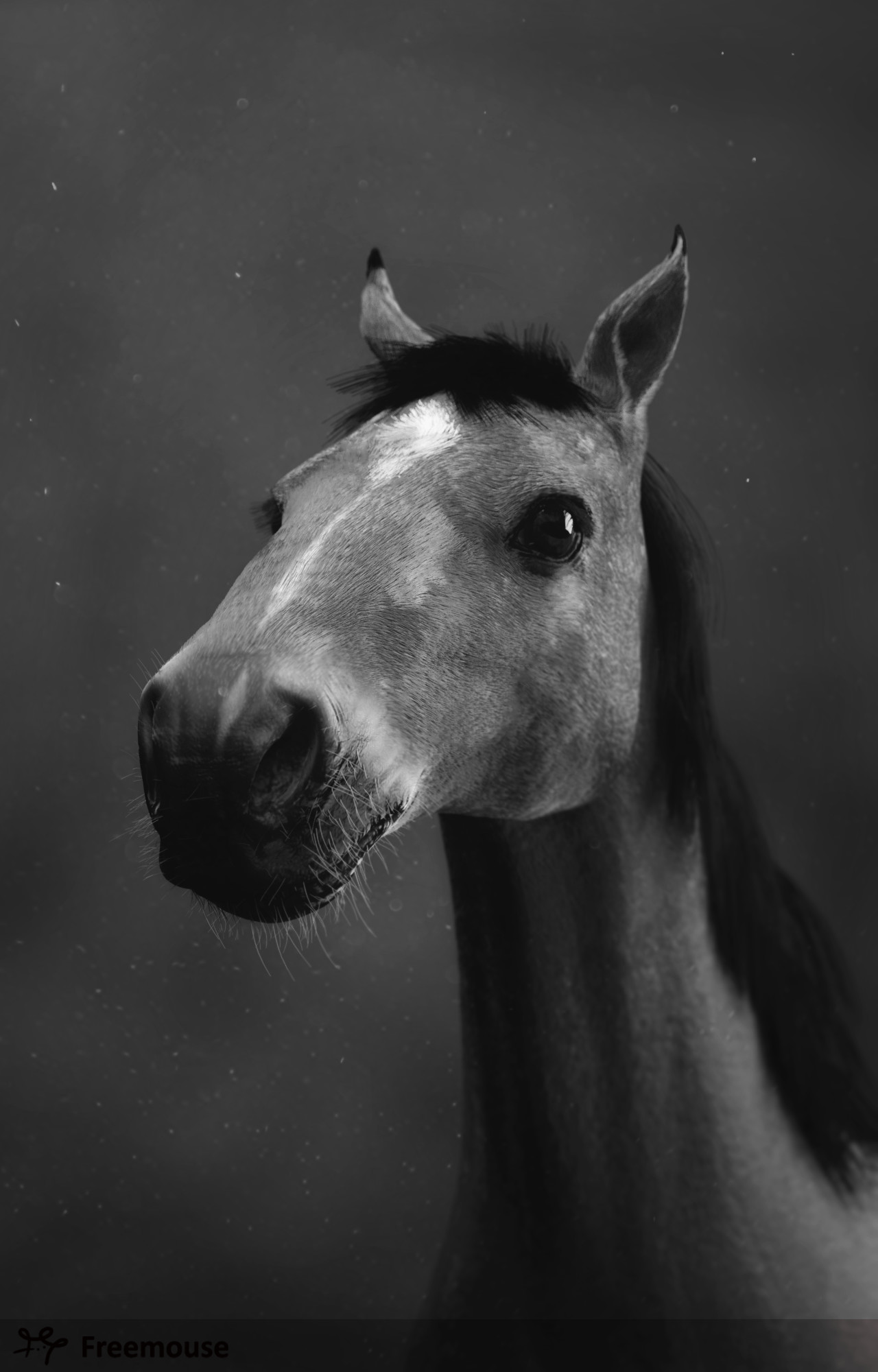 Anais barbeau sanction horse render02nb