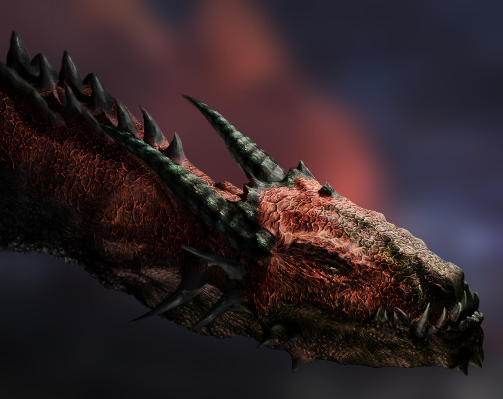 Julian vidales dragontest2