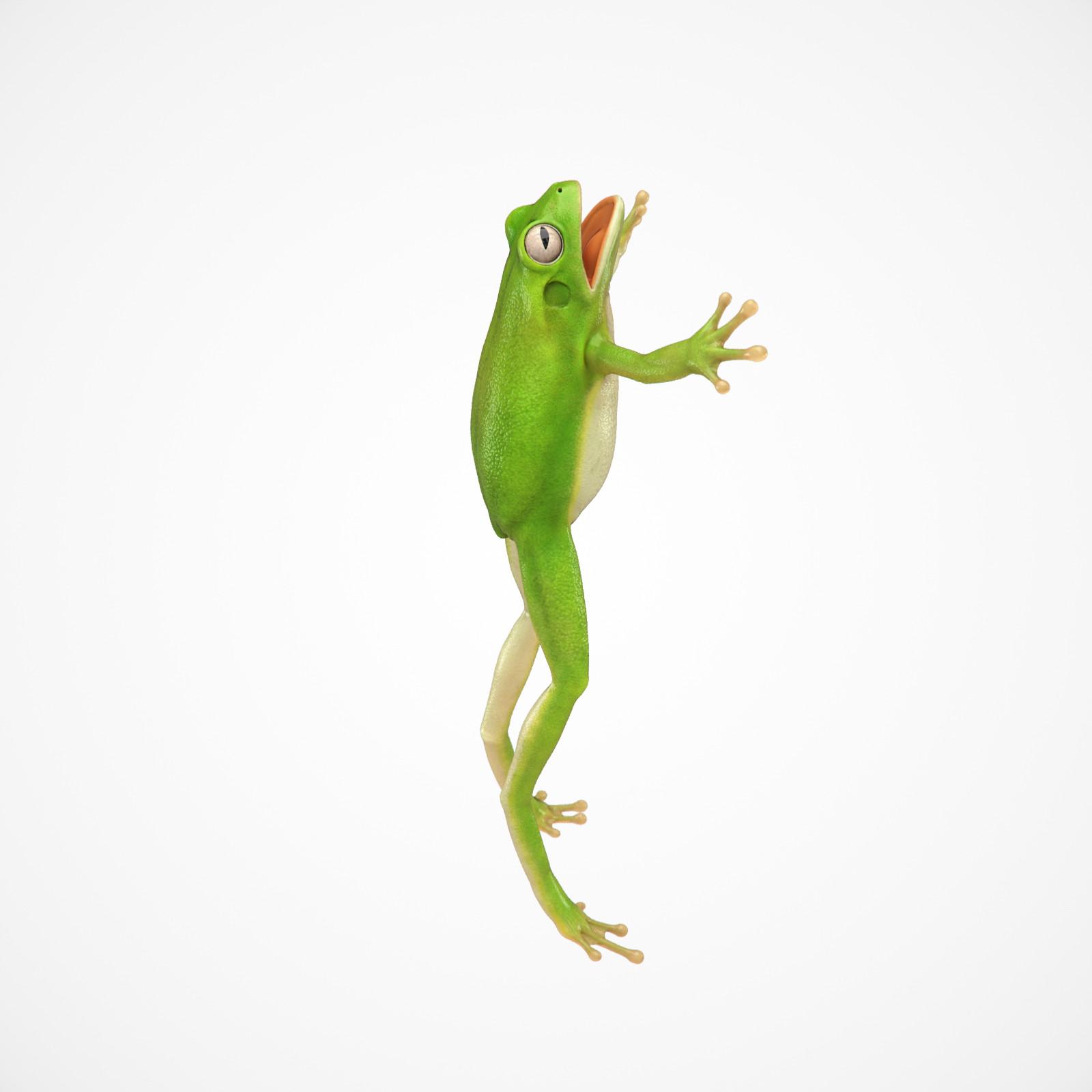 Cgmonkeyking fd kps frog test02 pn01 pp 0001