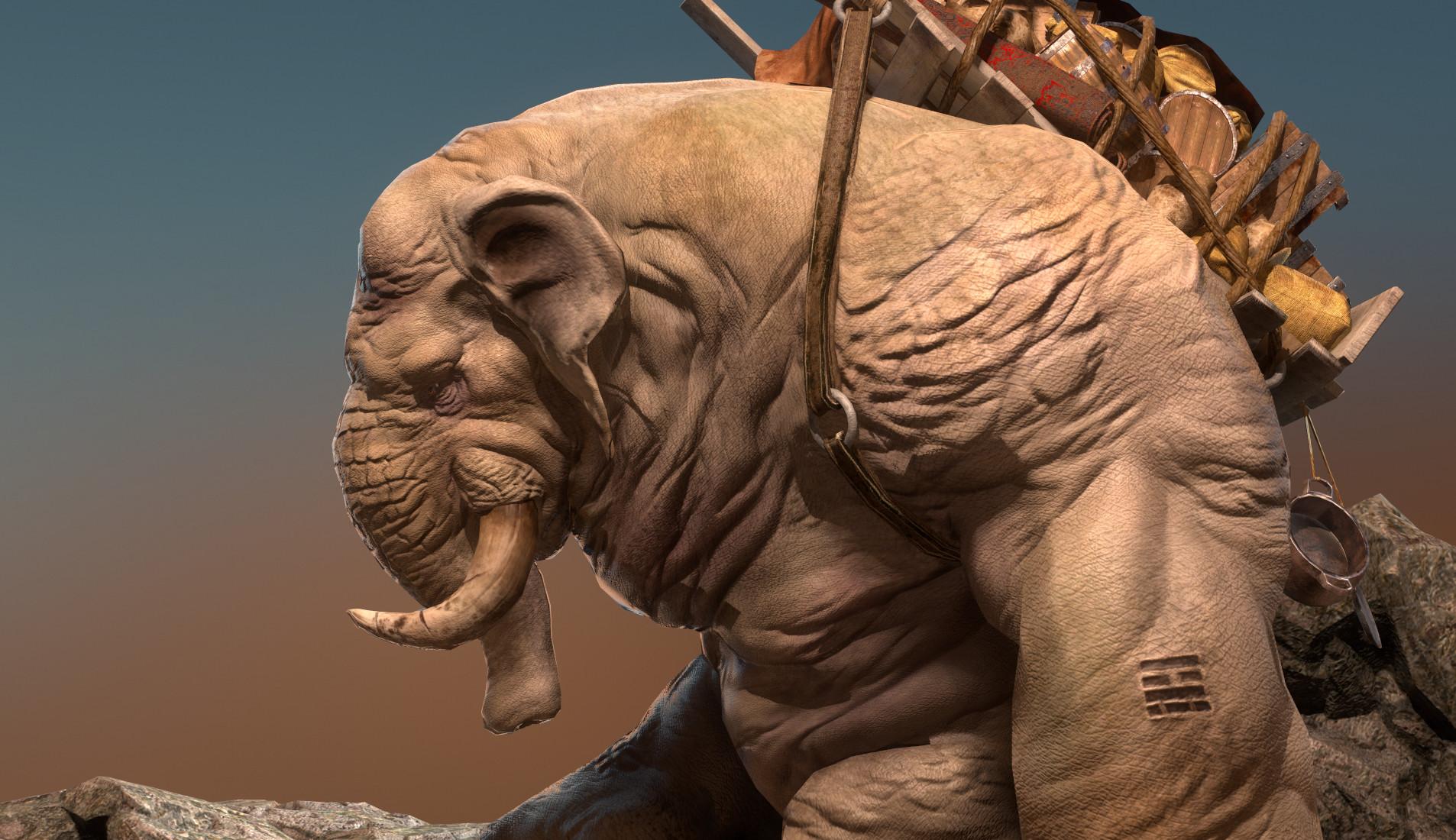 Daniel s rodrigues elephant beauty 010