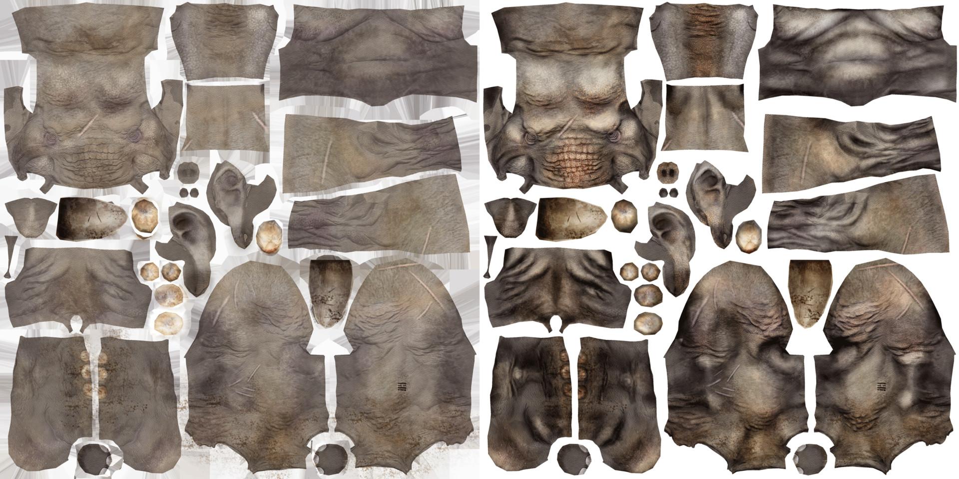 Daniel s rodrigues elephant textures 002