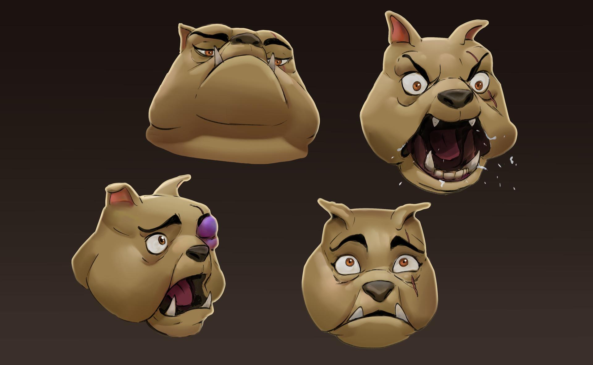 Loic liok bramoulle smks bulldog 001 facial