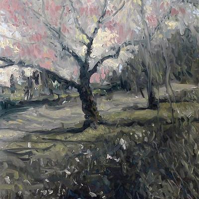 Gilles beloeil 0069 2014 spring in central park 20x16 all lr