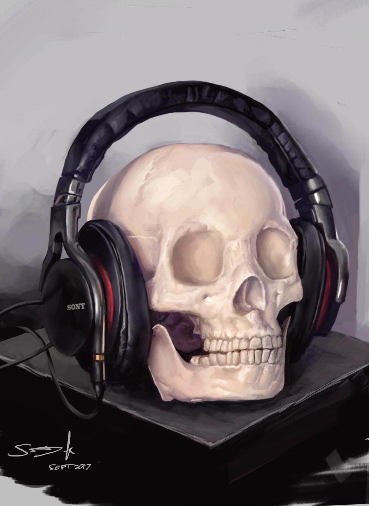 Sam denmark skullheadphones